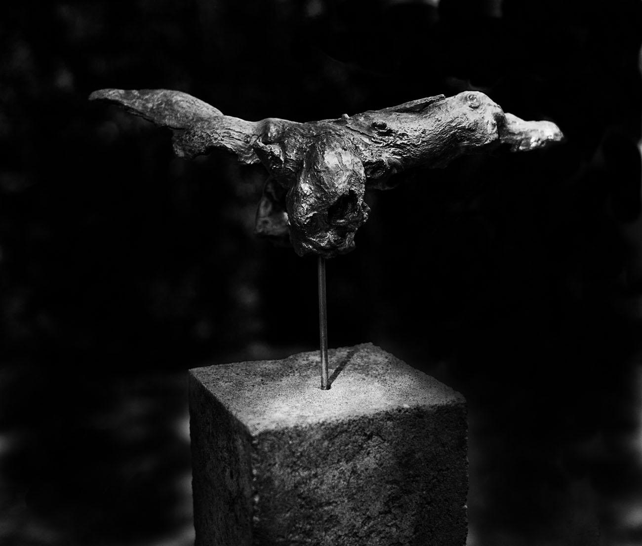 SkulpturengartenNr_0004_ex_L1004352NC