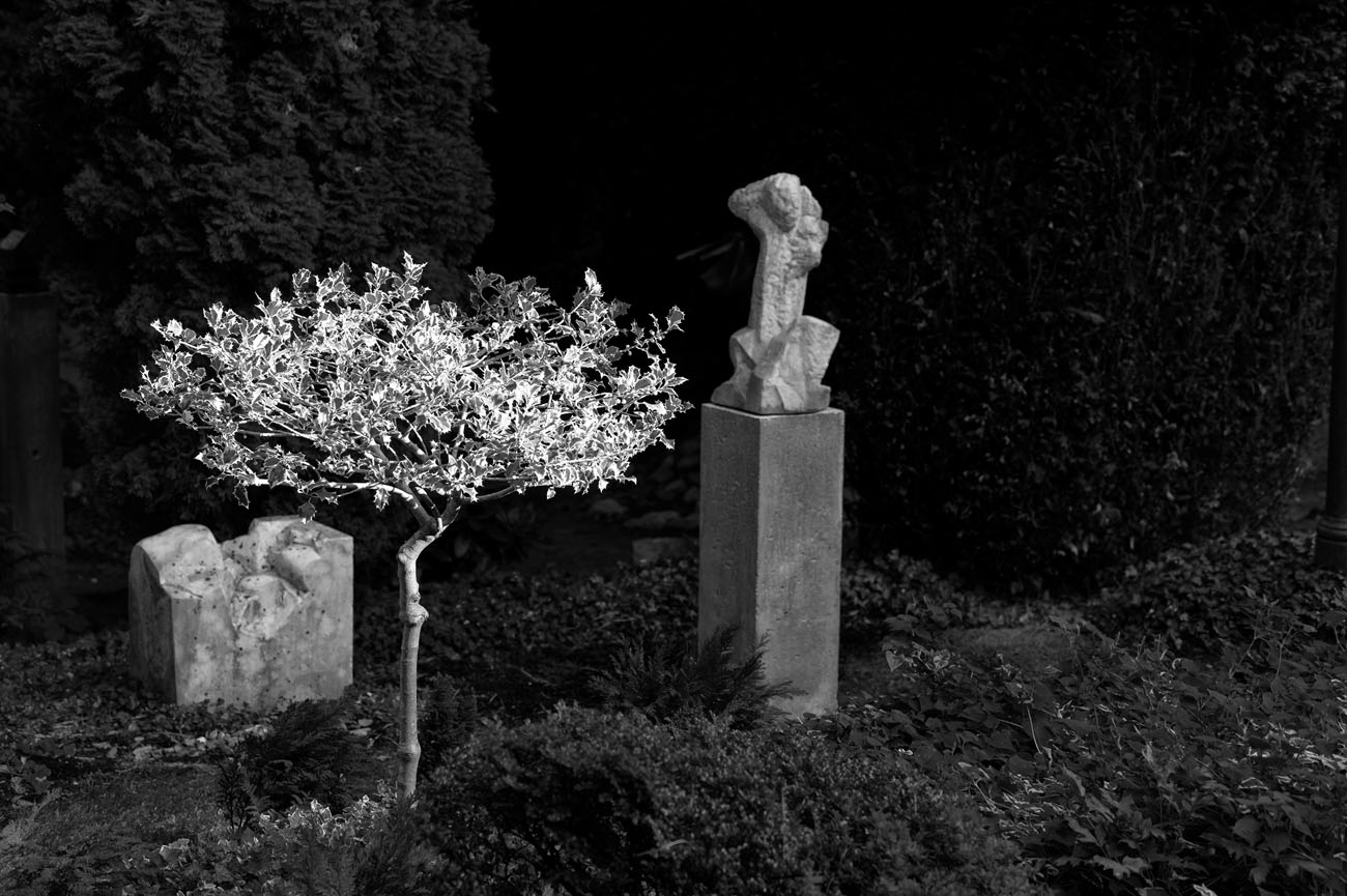 SkulpturengartenNr_0005_ex_L1004397NC