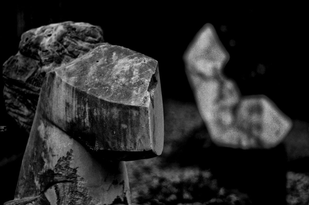 SkulpturengartenNr_0006_ex_L1004403NC