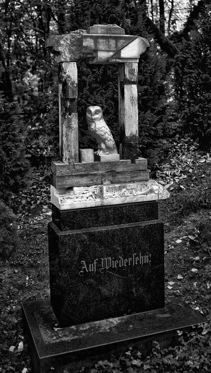 SkulpturengartenNr_0008_ex_L1004357NC